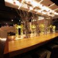 高級に感じる照明と賑わいを感じる照明計画とは?光と集客の関係性